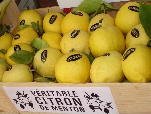 Фестиваль лимонов в Ментоне, фестиваль лимонов в ментоне фото