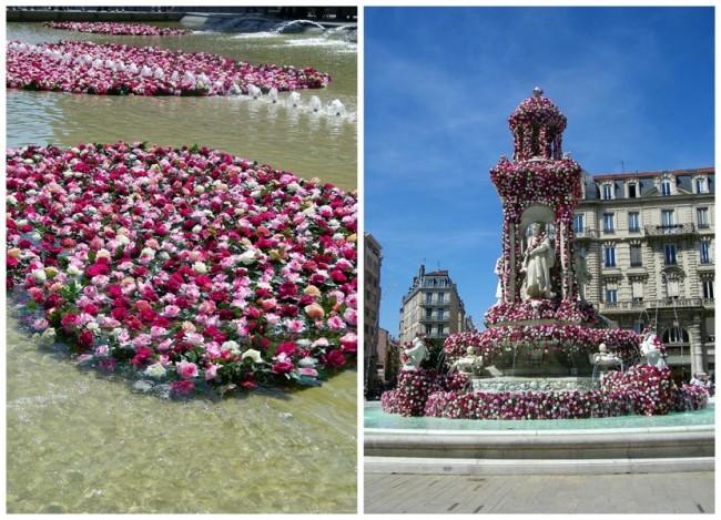 Фестиваль роз, фестиваль роз в Лионе, фестиваль в Лионе, розы Лиона