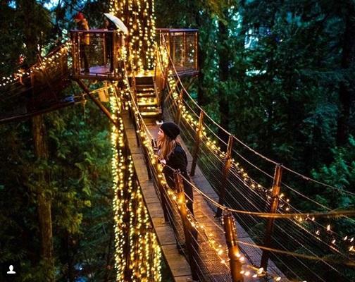 парк Капилано, мост Капилано, достопримечательности Ванкувера, куда поехать на выходные, мост Капилано Ванкувер