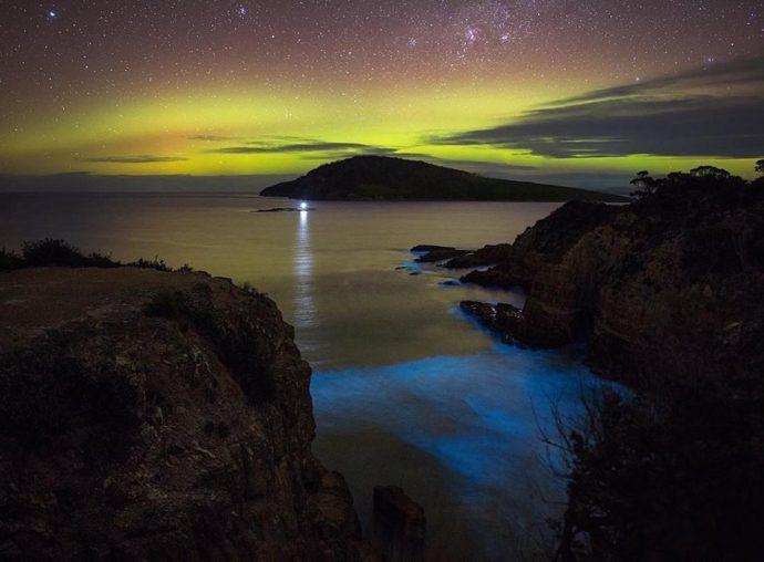 Светящийся планктон, Светящиеся динофлагелляты, светящиеся берега, светящийся берег
