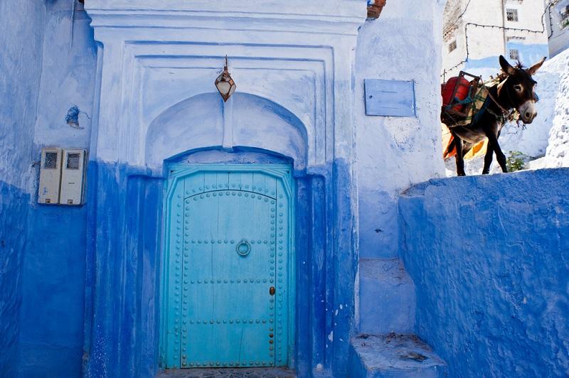 шефшауэн почему синий,куда поехать на выходные в марокко, куда поехать на выходные,шефшауеэн, шефнауэн марокко, достопримечательности шефшауэн