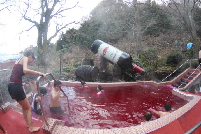 купание в вине япония, куда поехать на выходные, парк Хакон Япония