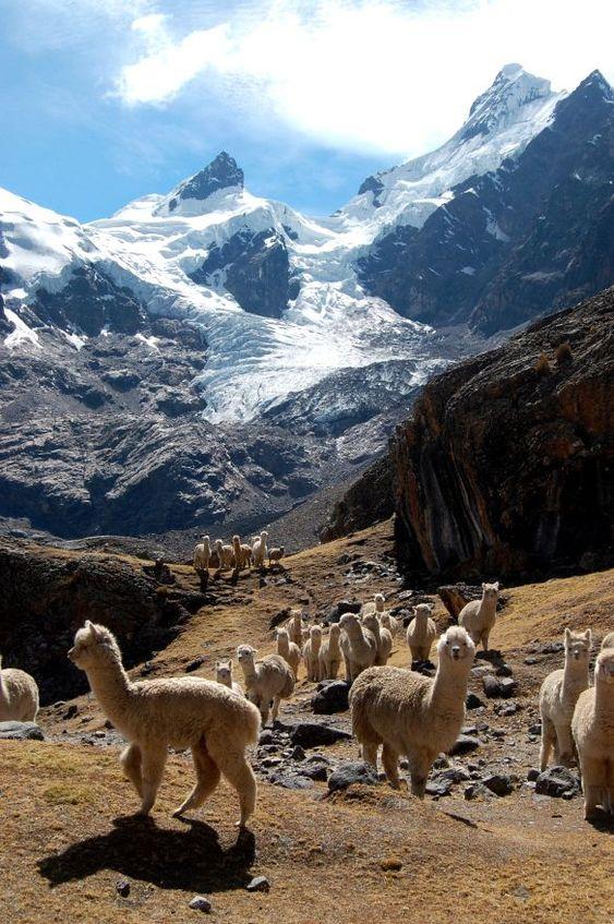Радужные горы в Перу, куда поехать на выходные, гора Виникунка, Анды в Перу