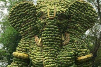 слон Ганеша из миллиона бананов