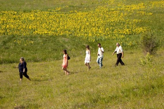 куда поехать на выходные в Украине весной, куда поехать на выходные в Виннице,долина ирисов, цветение диких ирисов