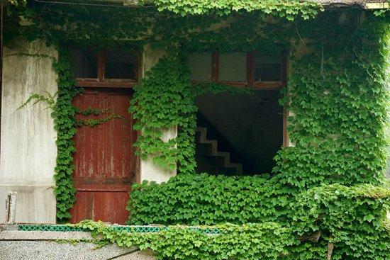 Куда поехать на выходные в Китае, заброшенная зеленая деревня в китае как добраться, заброшенная зеленая деревня в Китае