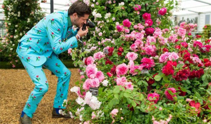 выставка цветов в Королевских Садах Великобритании, выставка цветов в Челси 2018, выставка цветов в Челси, куда поехать на выходные в Еврпе, куда слетать на выходные в Европу, интересные места в Европе,выставка цветов в Лондоне